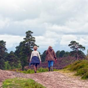 zwei Frauen wandern, Wegbegleitung