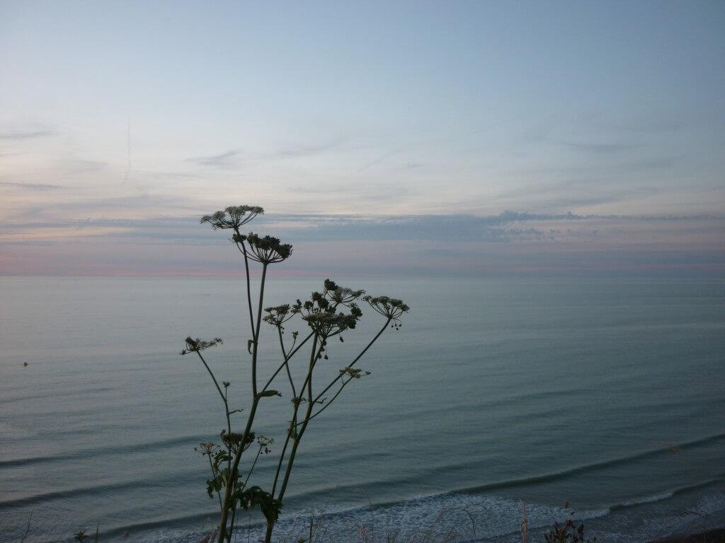 ruhiger Blick auf Landschaft in der Normandie, Abendstimmung